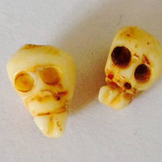 Bone Bead: Baby Bone Skull 8mm x 6mm