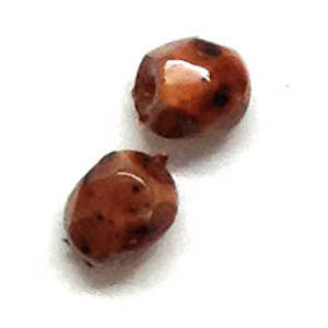 6mm coated facet - Brown speckles